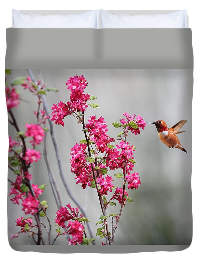 Hummingbird Duvet Cover featuring the photograph Hummingbird And Flowers by Peggy Collins