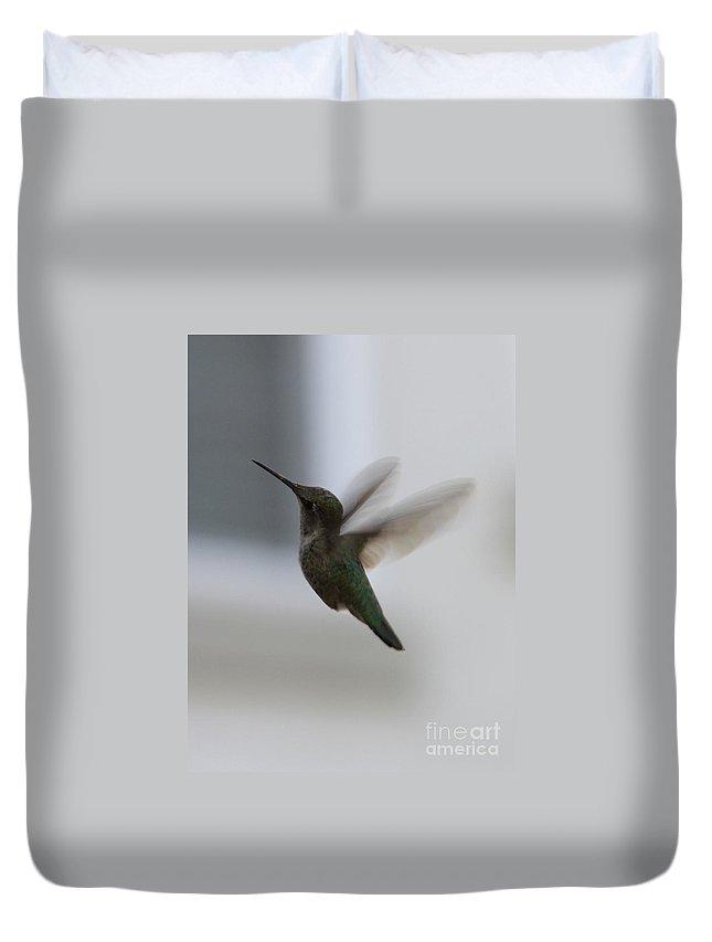 Hummingbird Duvet Cover featuring the photograph Hummingbird In Flight by Carol Groenen