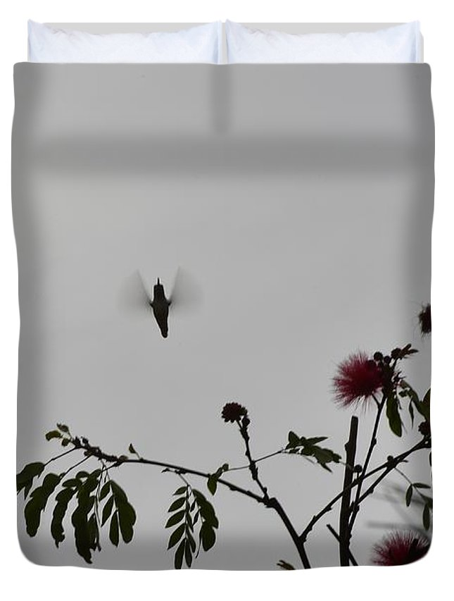 Linda Brody Duvet Cover featuring the photograph Hummingbird Silhouette I by Linda Brody