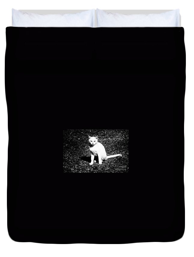 Black Duvet Cover featuring the photograph Hungry by Jessica Shelton