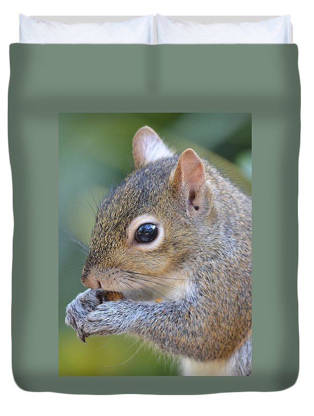 Squirrel Duvet Cover featuring the photograph Hungry Squirrel by Richard Bryce and Family