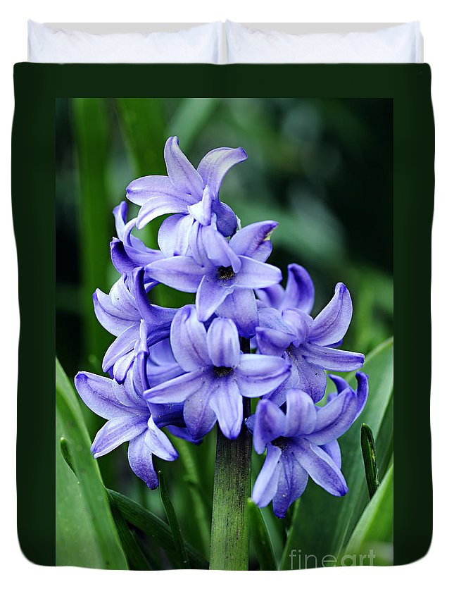 Photography Duvet Cover featuring the photograph Hyacinth by Larry Ricker