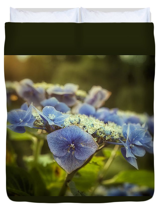Hydrangea Duvet Cover featuring the photograph Hydrangea In Fading Light by Belinda Greb