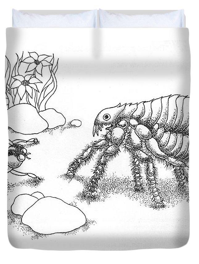Lady Bug Duvet Covers