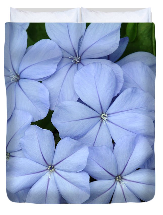 Macro Duvet Cover featuring the photograph I Love Blue Flowers by Sabrina L Ryan
