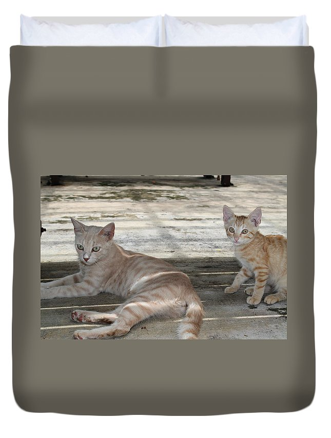 Mom Duvet Cover featuring the photograph I Want To Grow Up To Be Just Like You by Catie Canetti