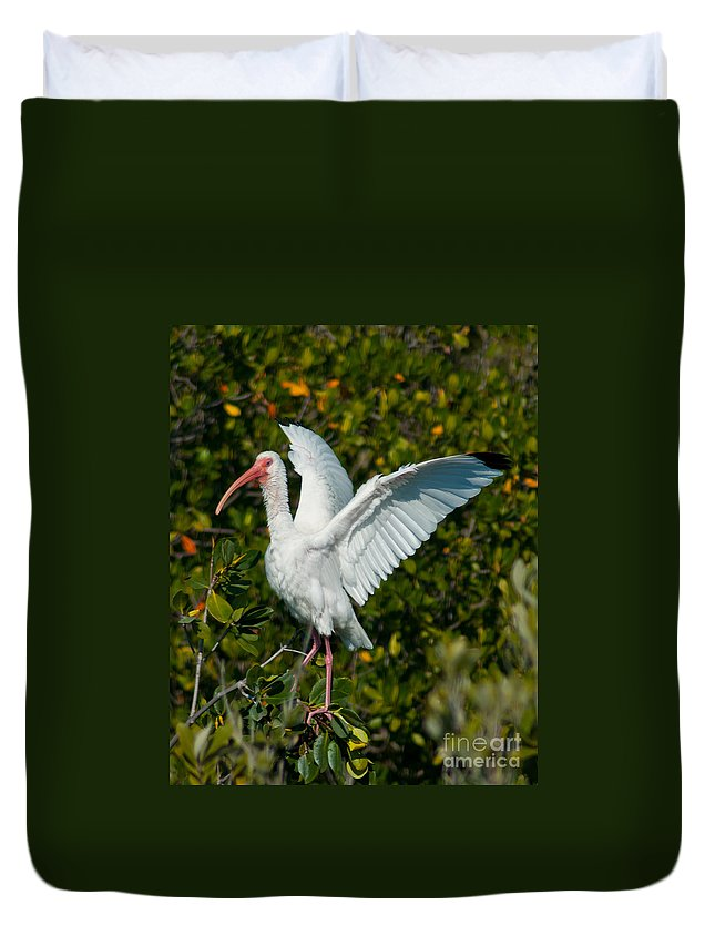 Ibis Duvet Cover featuring the photograph Ibis by Stephen Whalen