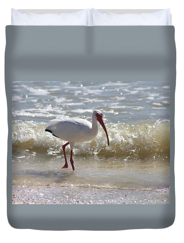 Ibis Duvet Cover featuring the photograph Ibis Walking The Beach by Christiane Schulze Art And Photography