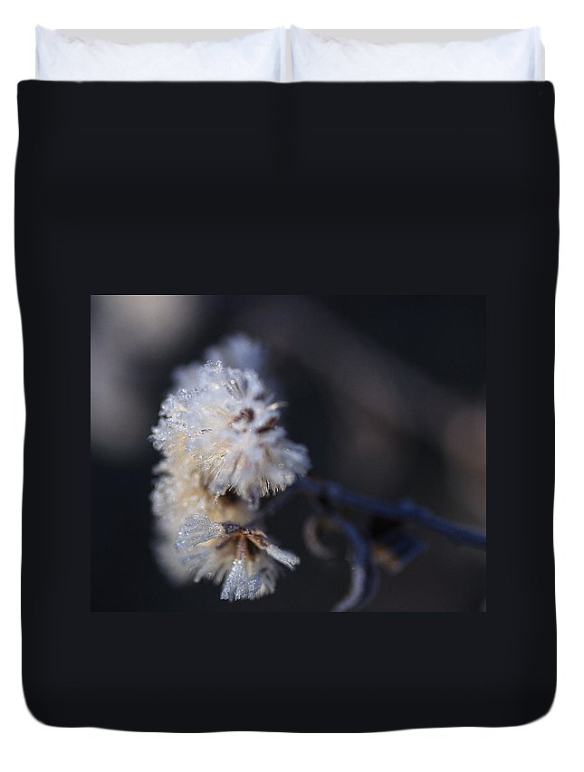 Frost Duvet Cover featuring the photograph Ice Flowers by Susan Capuano