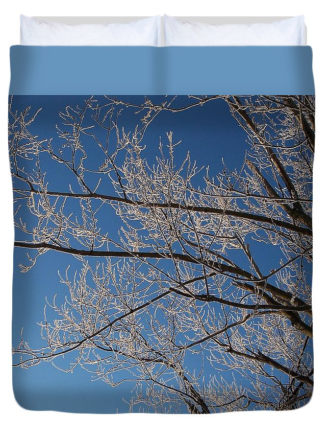 Branches Duvet Cover featuring the photograph Ice Storm Branches by Michelle Miron-Rebbe