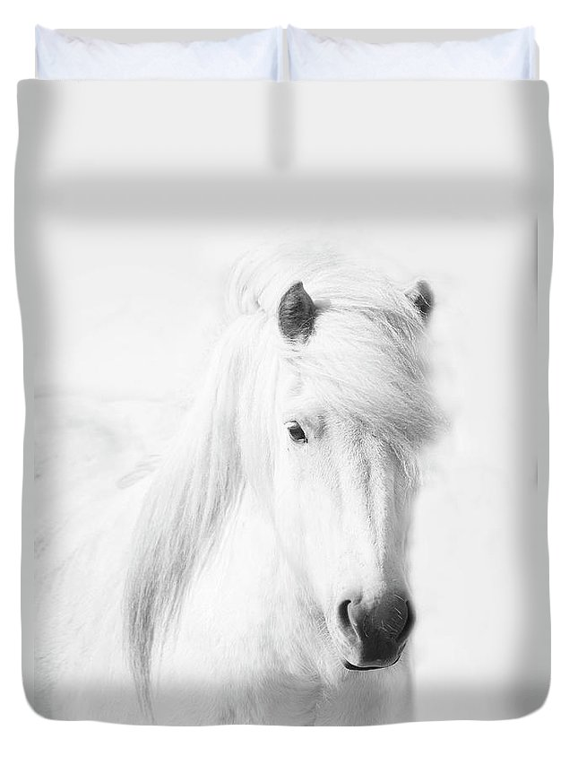 White Background Duvet Cover featuring the photograph Icelandic Pony In White by Grant Faint