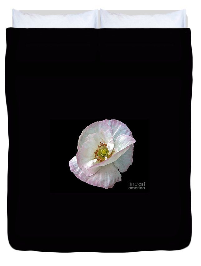 Icelandic Poppy On Black Duvet Cover featuring the photograph Icelandic Poppy Version Two by Byron Varvarigos