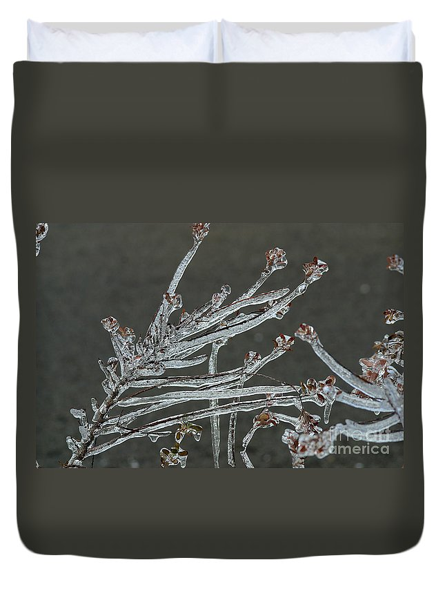 Ice Duvet Cover featuring the photograph Icy Branch-7474 by Gary Gingrich Galleries