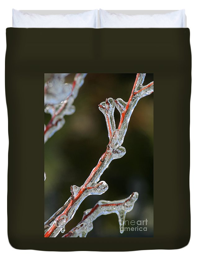 Ice Duvet Cover featuring the photograph Icy Branch-7512 by Gary Gingrich Galleries