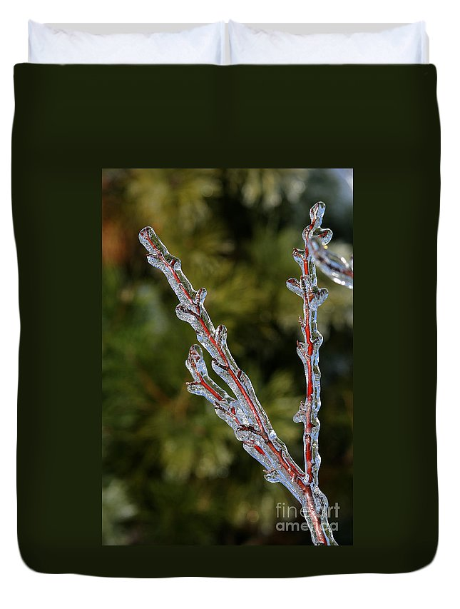 Ice Duvet Cover featuring the photograph Icy Branch-7520 by Gary Gingrich Galleries