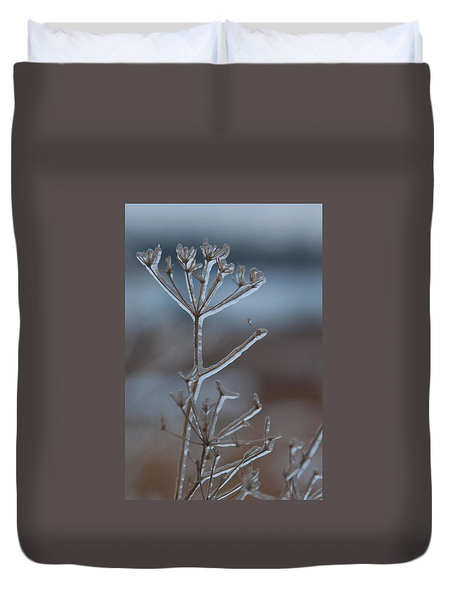 Ice Duvet Cover featuring the photograph Icy Shapes And Lines by Cascade Colors