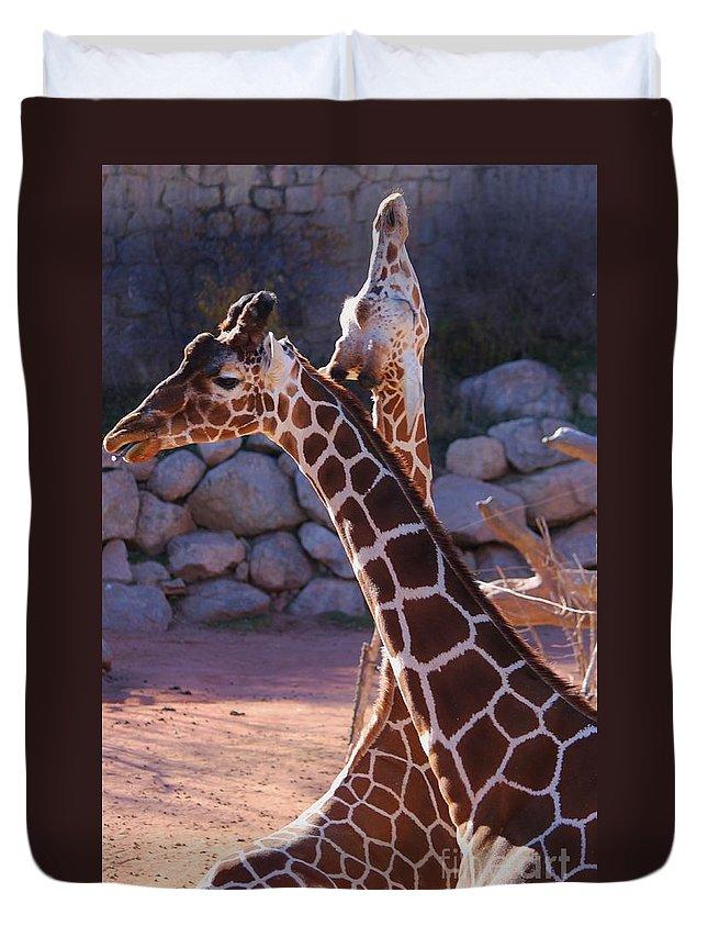 Giraffe Duvet Cover featuring the photograph I'm Not Listening by Tonya Hance