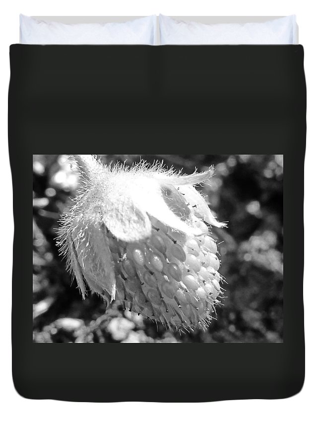 Black And White Duvet Cover featuring the photograph Immature by Steve Taylor