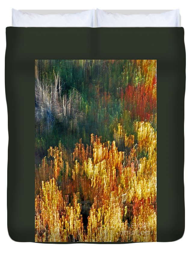 Nature Duvet Cover featuring the photograph Impressionists Autumn by Skip Willits