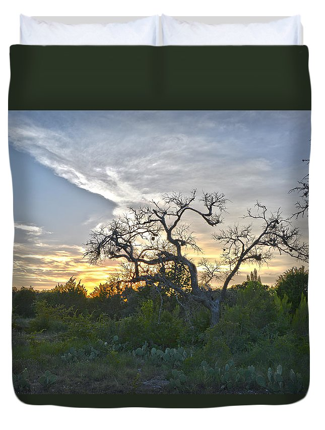 Texas Duvet Cover featuring the photograph Cedar Park Texas In A Strange Land by JG Thompson