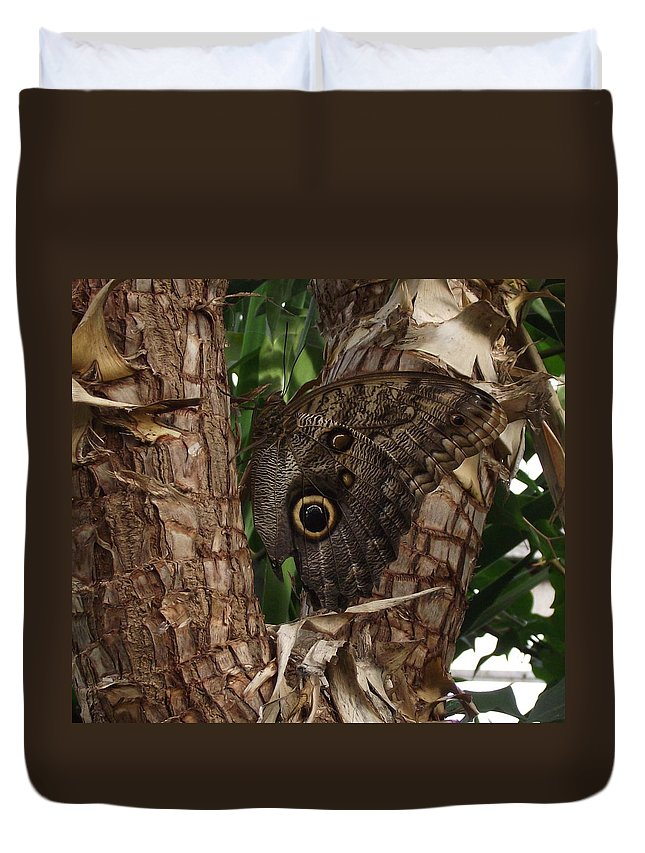 Butterfly Duvet Cover featuring the photograph In Disguise by Stephen Willmer