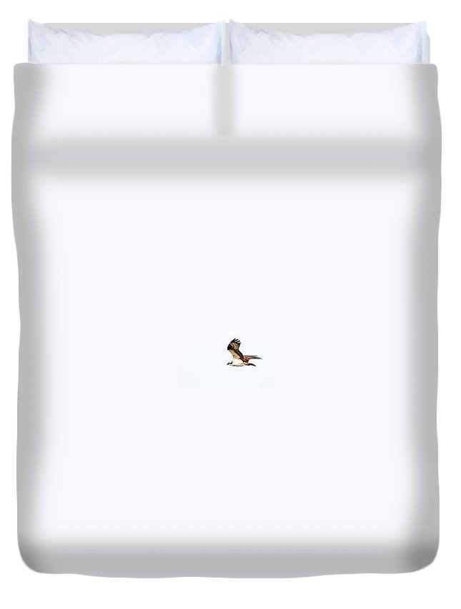 Flight Duvet Cover featuring the photograph In Flight 4 by Wesley Farnsworth
