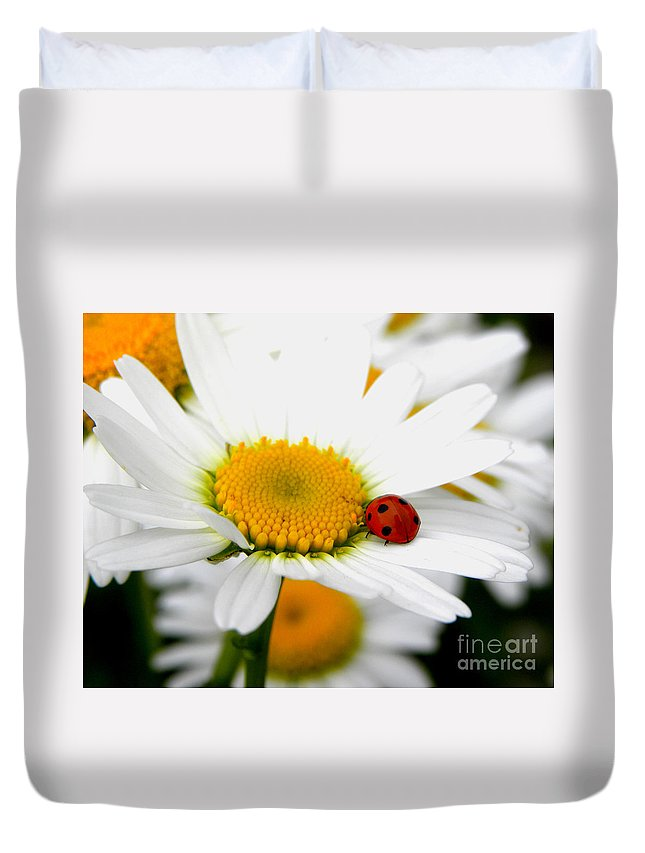 Ladybug Duvet Cover featuring the photograph In Love With A Ladybug And A Daisy by Tisha Clinkenbeard