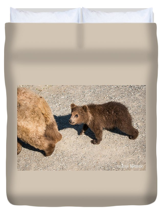 Alaska Duvet Cover featuring the photograph In Mom's Footsteps by Joan Wallner