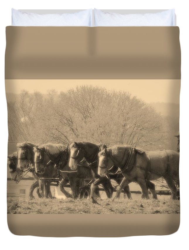 Horses Duvet Cover featuring the photograph In The Field by Alice Gipson