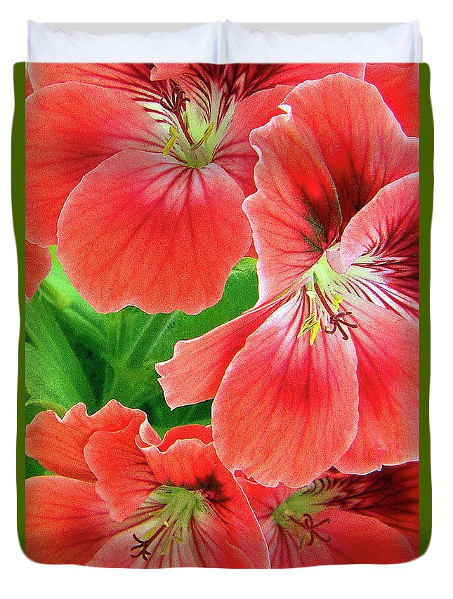 Red Flower Duvet Cover featuring the photograph In The Garden. Geranium by Ben and Raisa Gertsberg