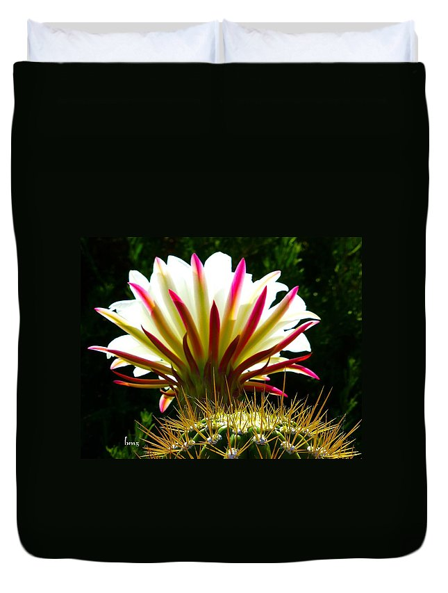 Cactus Duvet Cover featuring the photograph In The Morning Light by Barbara Zahno