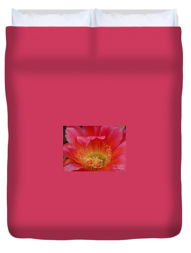 Prickly Pear Cactus Duvet Cover featuring the photograph In The Pink by Vivian Christopher