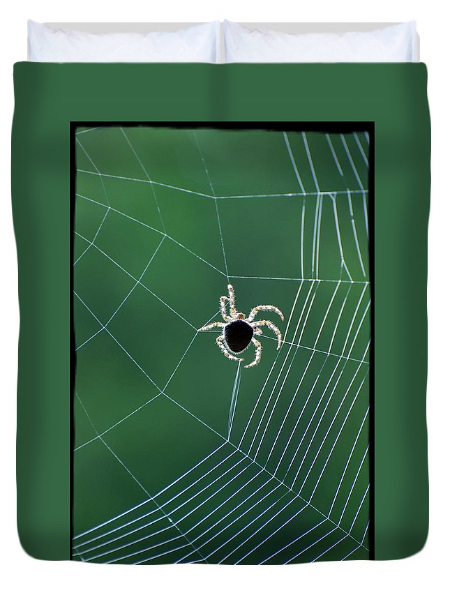 Spider Duvet Cover featuring the photograph In The Process by Jes Fritze