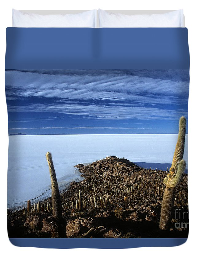 Bolivia Duvet Cover featuring the photograph Incahuasi Island And Salar De Uyuni by James Brunker