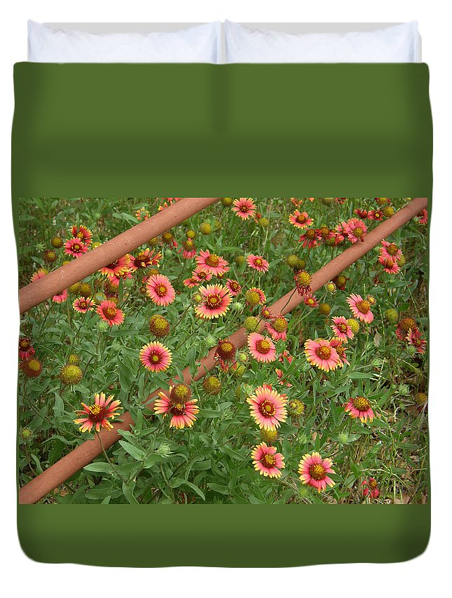 Wildflower Duvet Cover featuring the photograph Indian Blanket by Shannon Story
