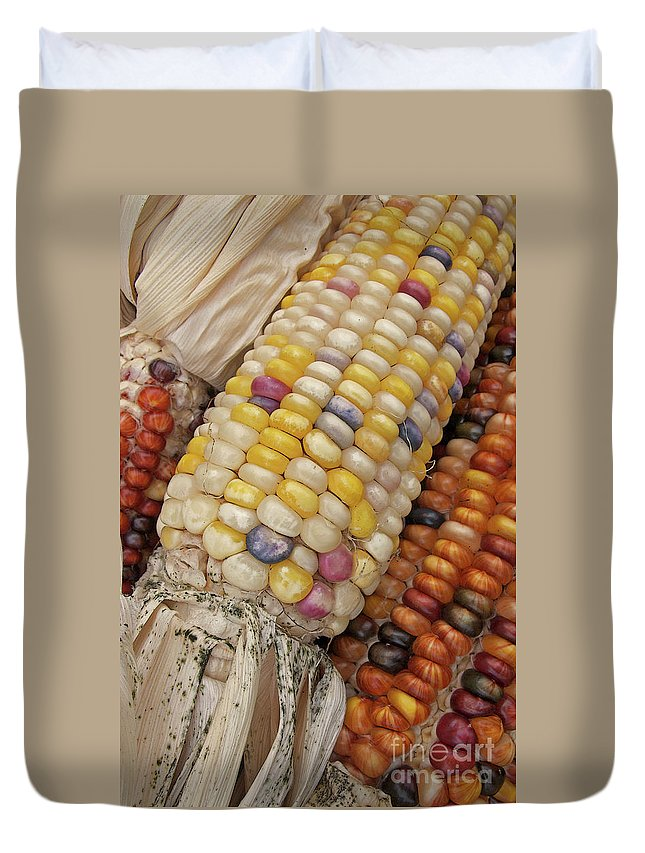 Indian Corn Duvet Cover featuring the photograph Indian Corn by Ann Horn