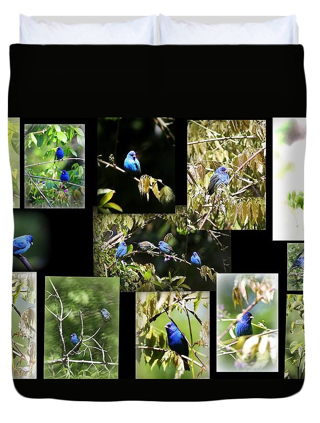 Indigos Duvet Cover featuring the photograph Indigos-collages 6-009 by Travis Truelove