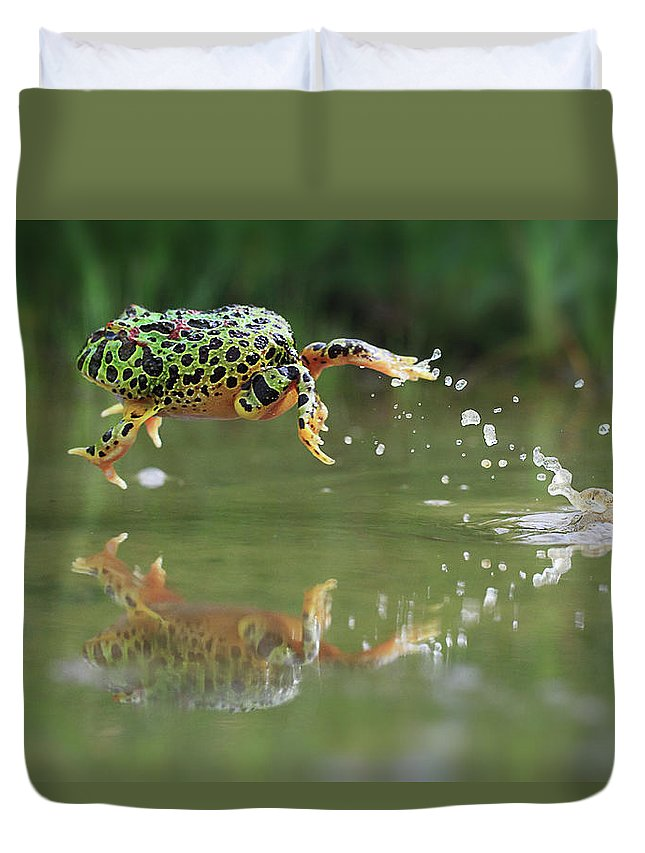 Grass Duvet Cover featuring the photograph Indonesia, Riau Islands, Frog Jumping by Shikheigoh