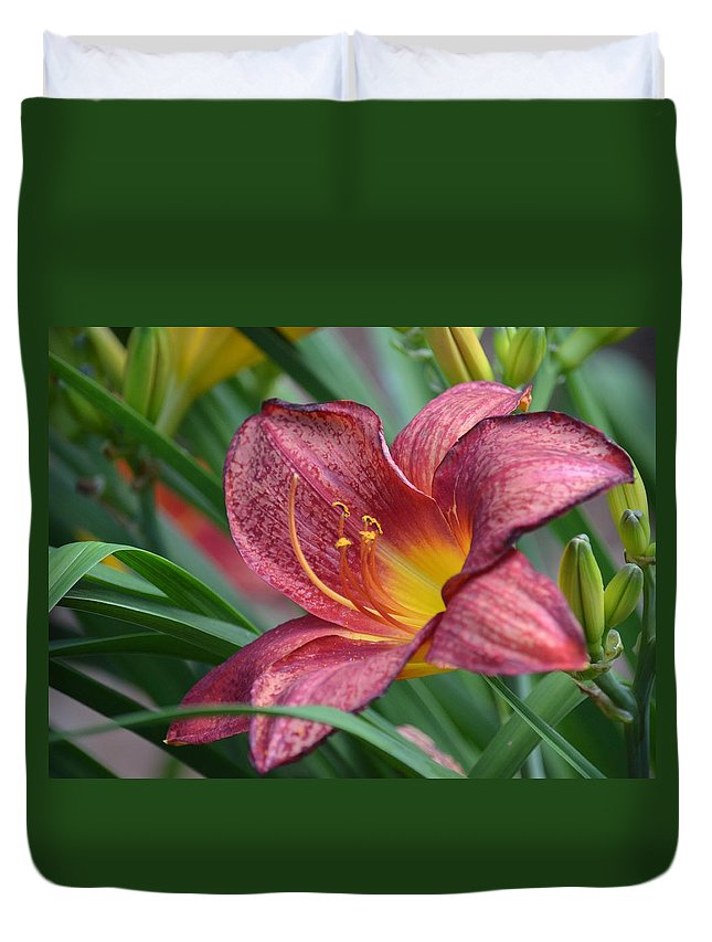 Inflamed - Lily Duvet Cover featuring the photograph Inflamed - Lily by Maria Urso