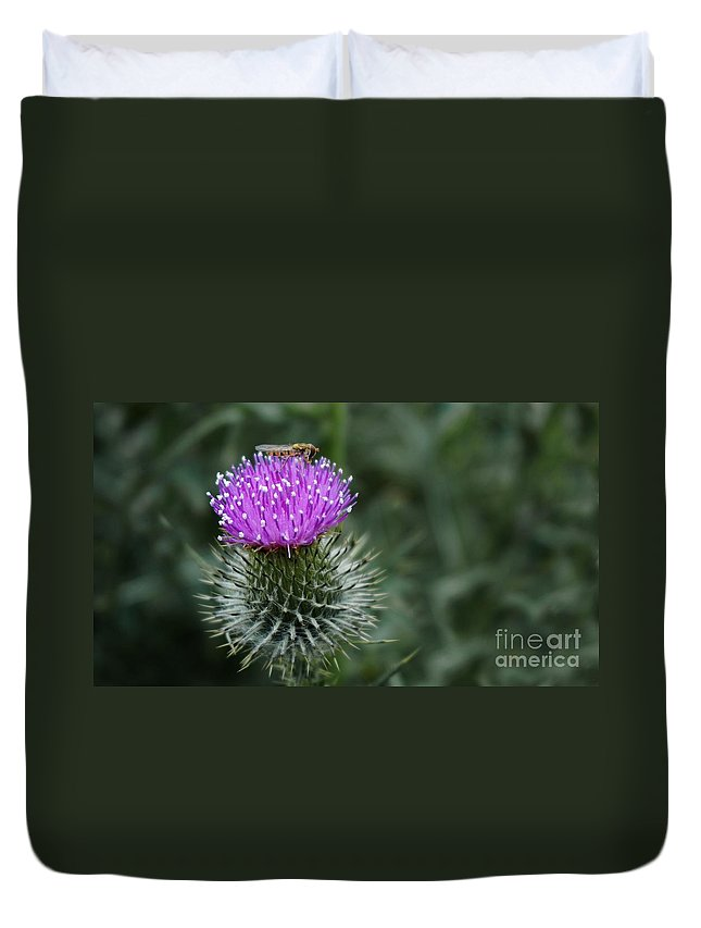Thistle Duvet Cover featuring the photograph Insect On A Thistle by MSVRVisual Rawshutterbug