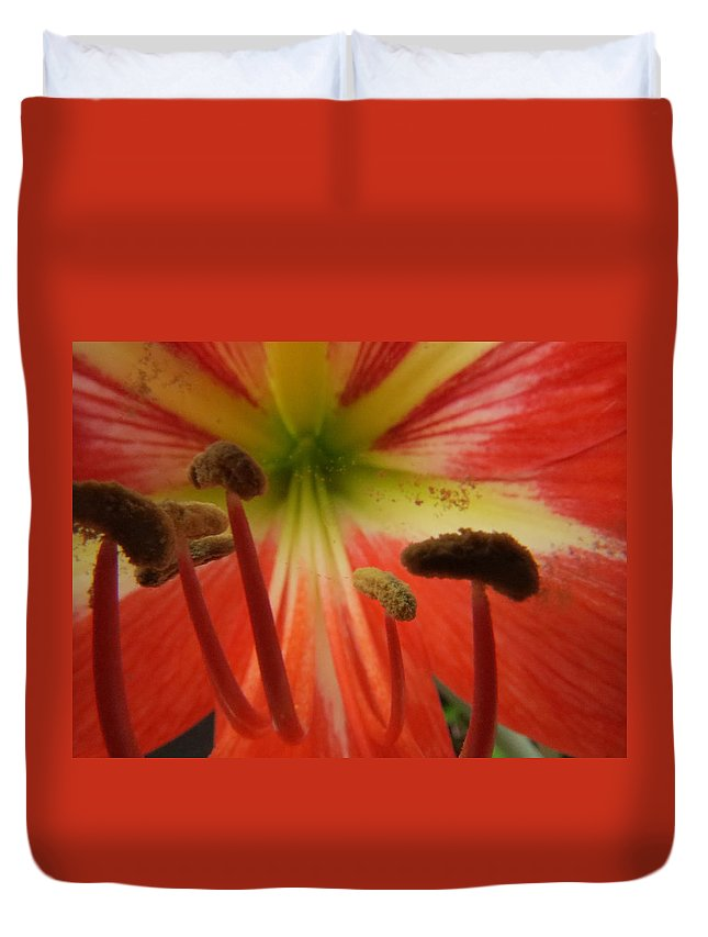 Amaryllis Duvet Cover featuring the photograph Inside Amaryllis by Zina Stromberg