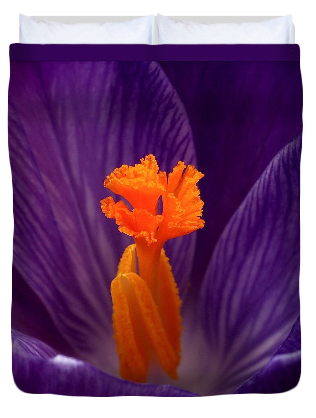 Crocus Duvet Cover featuring the photograph Interior Design by Rona Black