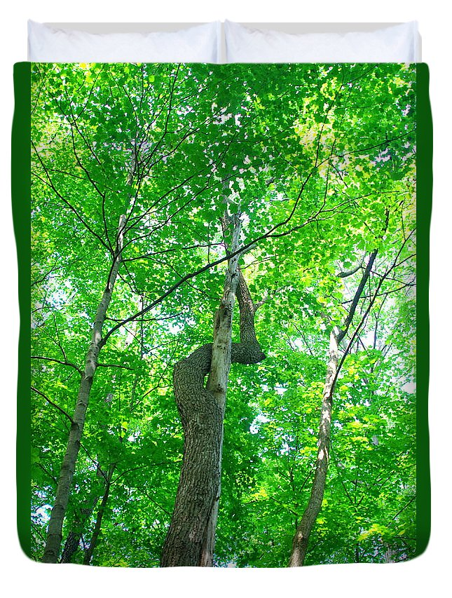 Trees Growing Together Duvet Cover featuring the photograph Intertwined by Kitrina Arbuckle