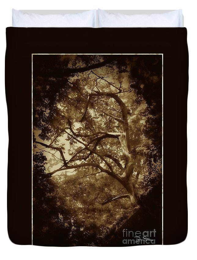 Tree Duvet Cover featuring the photograph Into The Dark Wood by Dan Stone