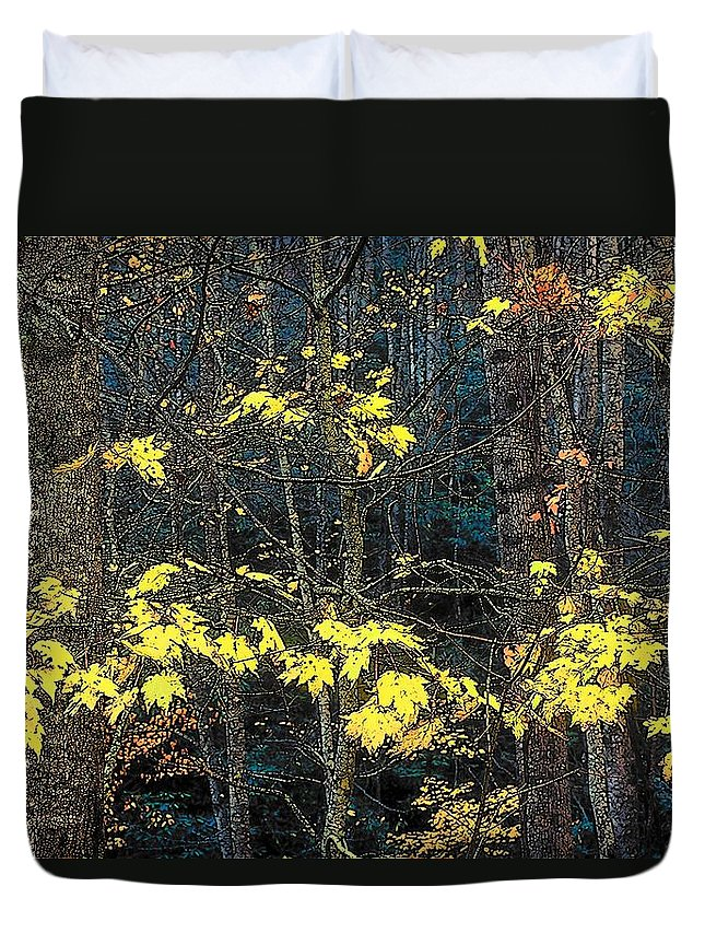 Digital Art Duvet Cover featuring the photograph Into The Fall by Rodney Lee Williams