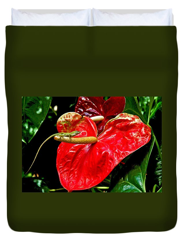 Anthurium Duvet Cover featuring the photograph Into The Heart by Norman Johnson