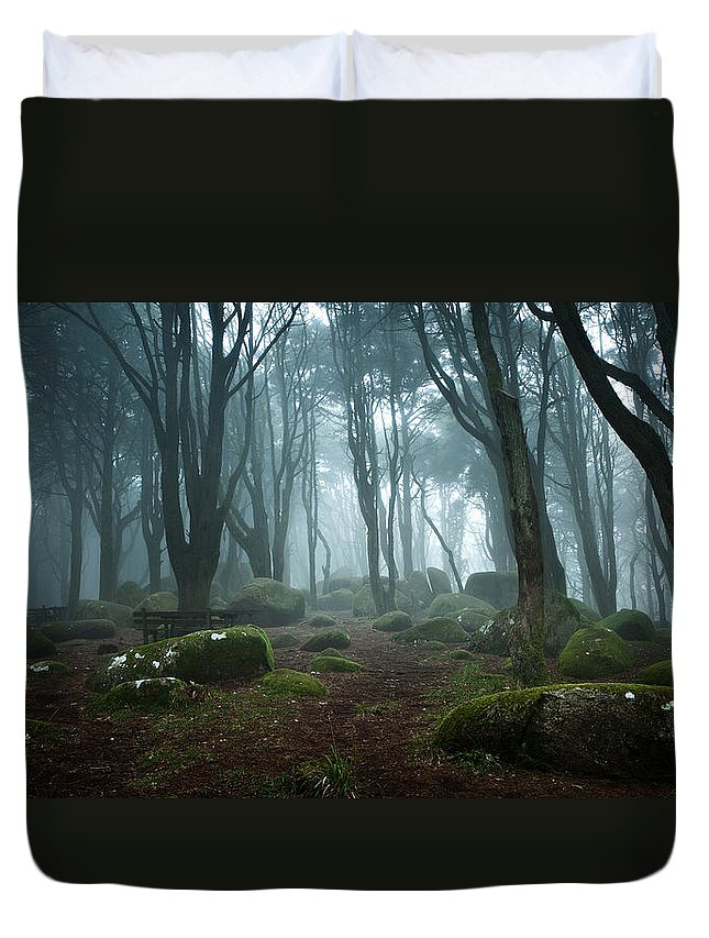 Nature Duvet Cover featuring the photograph Into The Light by Jorge Maia