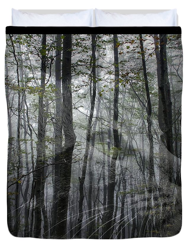 Into The Woods Duvet Cover featuring the digital art Into The Woods by Elizabeth McTaggart