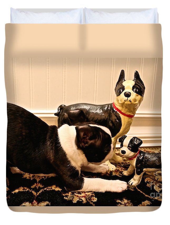 Animal Duvet Cover featuring the photograph Invitations by Susan Herber