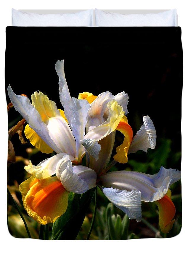 Iris Duvet Cover featuring the photograph Iris by Rona Black
